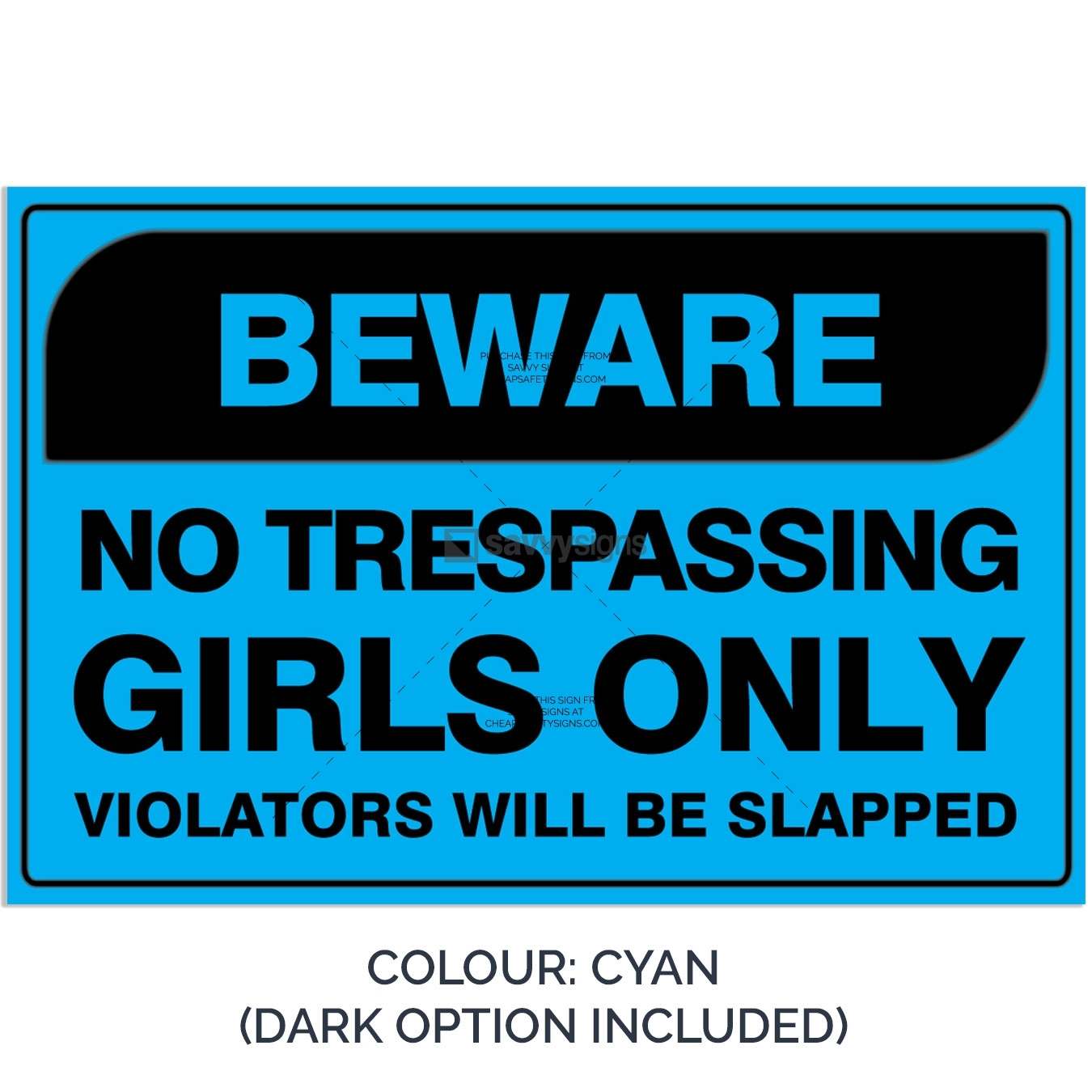 SSFUN3050-Girls-Only-2A-Cyan-Bedroom-Door-Sign_Savvy-Signs_v1